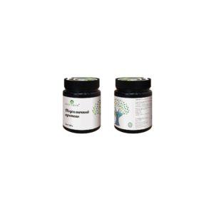 Концентрат подсолнечного белка, 250 гр, Оргтиум